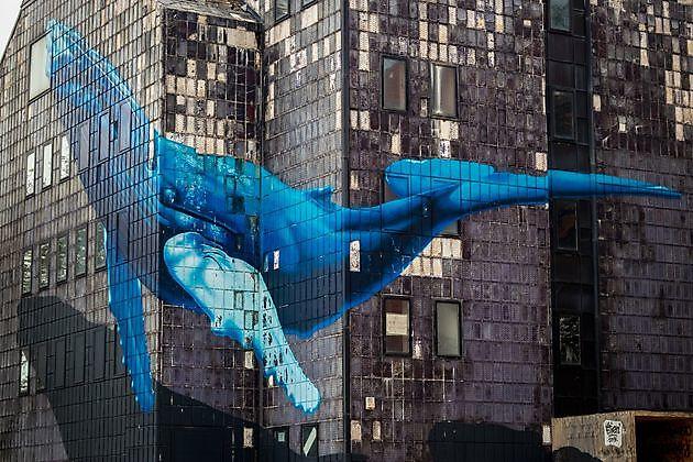 Mavro in de rol van graffiti beschermer - Giraffi Graffiti Removers